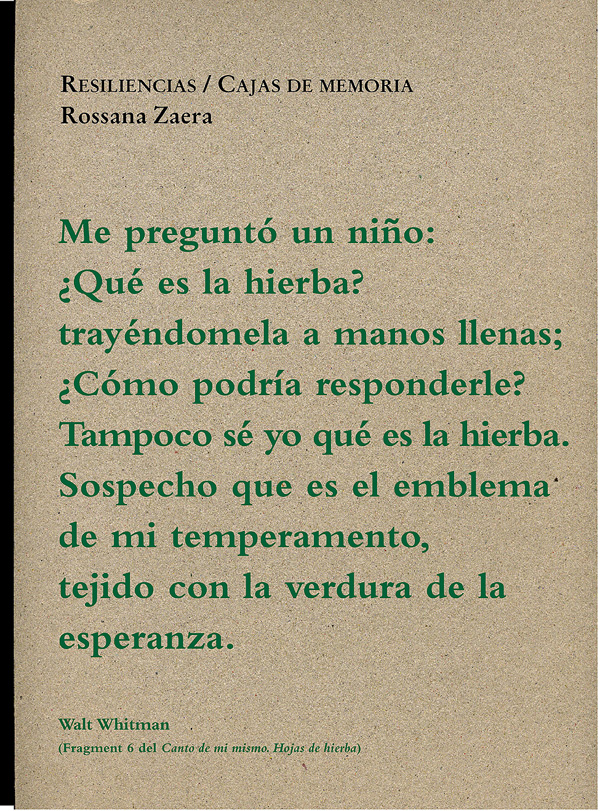 Resiliencias R.Zaera