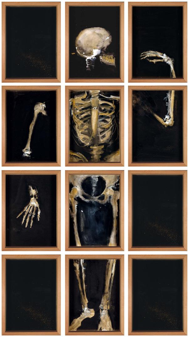 """""""Restauración"""" 1999, serie Anatomías. 200 x 111 cm Gouache y pastel y tinta china sobre papel 12 cajas de madera y vidrio (49,3 x 36 cm) unidas entre si por tornillos"""